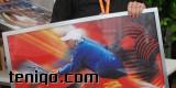 marek_durski 2011-06-15 4814
