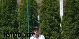 tennis-archi-cup-2014-mistrzostwa-polski-architektow-w-tenisie 2014-09-09 9854